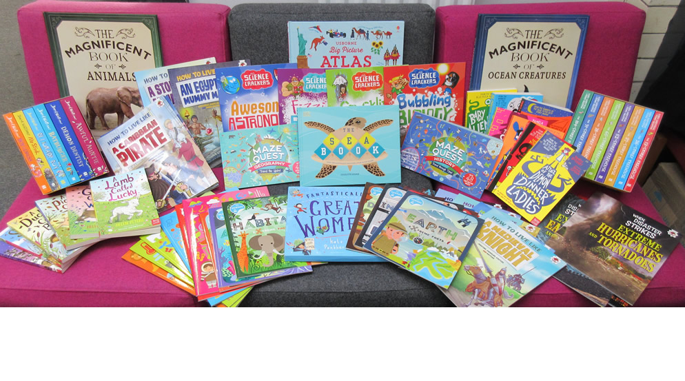Thank you for supporting the Year 3 Book Sale. Look at the books we bought!