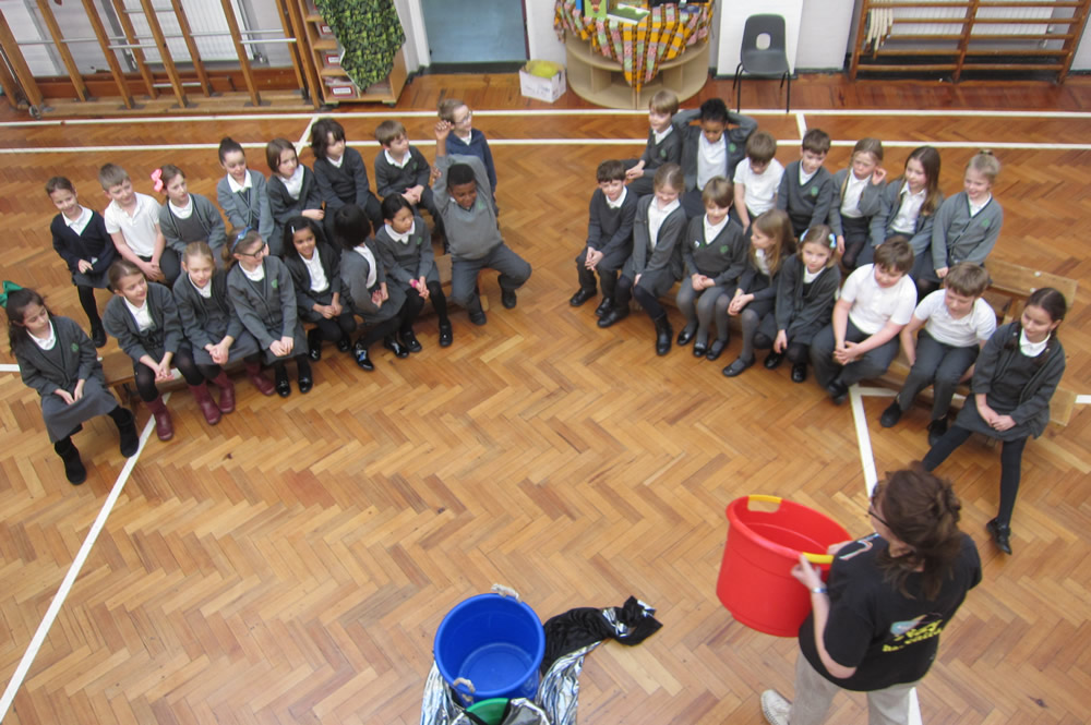 We learnt about froces with CREW. Click on the news link to see more.